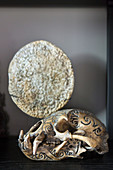 Engraved animal skull in display case