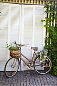 Old bicycle with flowers in basket in front of shed