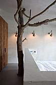 Ein Baumstamm hinter dem Bett im Schlafzimmer mit Trennwand