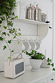Retro radio and potted ivy on shelf and cabinet below cups hung from hooks