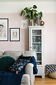 House plant on top of display case against pink wall in living room
