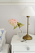 Lamp and sprig of flowers on white bedside cabinet