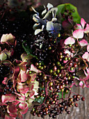 Elderberries and hydrangea flowers (close-up)