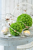 Balls of green flowers, white branches and candles in egg shells