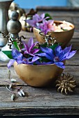 Blue and purple clematis flowers in golden bowl