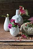 Verschiedene Vasen mit Stiefmütterchen und Caladium-Blatt