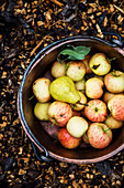 Pear and apples in a copper bucket