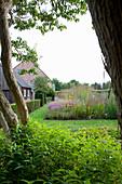 Blick auf gepflegten Garten mit Staudenbeet