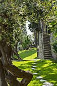 Schatten spendende alte Bäume und Steintreppe im Garten