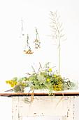 Verschiedene Wiesenblumen auf Tisch und an der Wand