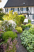 Gravel path winding through herbaceous borders and shrubs to half-timbered house