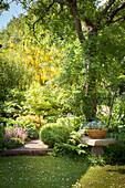 Sommerlicher Garten mit Rasen, Steinbank unter Baum und Weg gesäumt mit Staudenbeeten