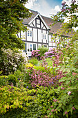 View of half-timbered house through shrubs in garden