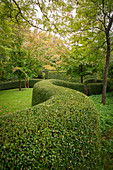 Clipped hedge winding through gardens (Les Jardin de Castillon, France)