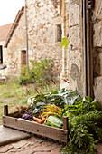 Freshly picked vegetables in wooden crate in doorway