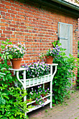 Violas on potting table against wall of brick house