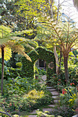 Path leading through climber-covered archway in exotic garden