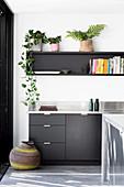 Zimmerpflanzen auf dem Wandregal über der Küchenzeile in Schwarz
