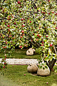 Decorative stone apples under apple trees in the orchard