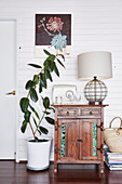 Antique wooden cabinet with radio and table lamp, next to it ficus in front of a white painted wooden wall