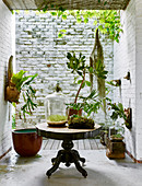 Plants on pedestal table in front of courtyard with brick walls