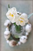 White narcissus in circlet of threaded quail eggs
