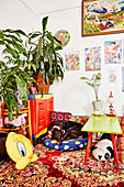 Room with colorful accessories in Asian style, dog on pillow