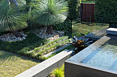 Garden with pool and grass trees (Xanthorrhoea)