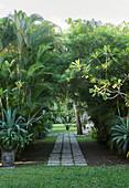 Gartenweg mit Pflastersteinen, umgeben von tropischen Pflanzen und Bäumen