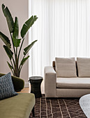 Upholstered furniture, side table and houseplant in front of patio door with floor-length curtain