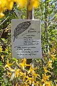 Handwritten invitation to Easter breakfast amongst flowering forsythia