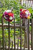 Spherical flower arrangements of dahlias, phlox and hollyhocks on garden fence