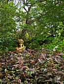 Bust under tree in densely planted garden