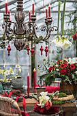 Table festively set with flowers in conservatory
