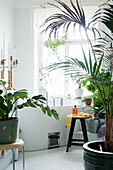 Zimmerpflanzen im Badezimmer mit Eckbadewanne und Mosaikfliesen
