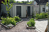 Beds with cobble edging and shed in courtyard