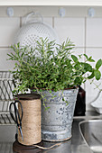 Herbs in metal bucket and reel of twine in kitchen