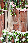 White and pink carnations on rustic wooden surface (top view)
