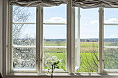 View of wide spring landscape through window