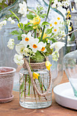 Bouquet of various types of narcissus in glass jar