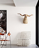 Animal head on white wall above designer armchair