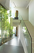 Stairs with glass balustrade and glass wall with view of bamboo garden