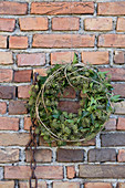 Wreath of ivy leaves and ivy flowers on old brick wall
