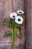 Anemones and ivy on handle of old wooden door