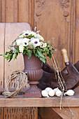 Strauß aus Anemonen, Nelken und Efeu in rostiger Amphore