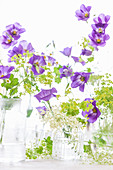 Kleine Sträuße aus Glockenblumen und Frauenmantel
