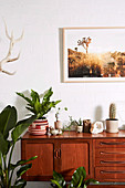 Retro sideboard with house plants