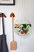 Goldfish in fish bowl suspended in macrame hanger
