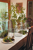 Plants and moss in tall jars on table with white runner