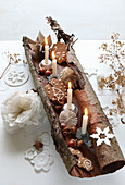 Four lit candles, acorns and biscuits in piece of rolled bark